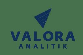www.valoraanalitik.com