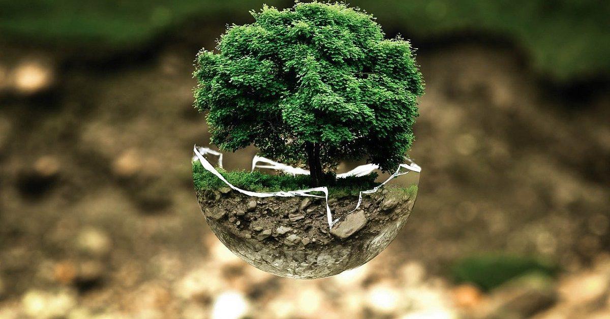 Medio ambiente (Foto Pixabay)