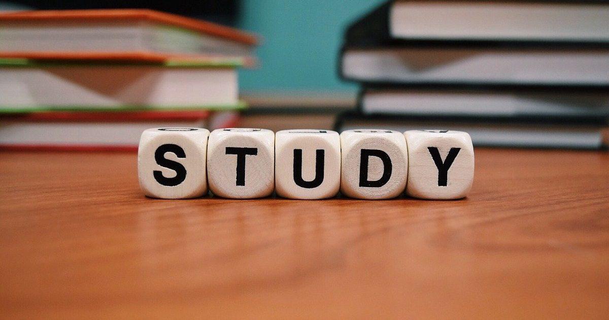 Estudiar, educación, agencias de estudios en el exterior (Foto Pixabay)