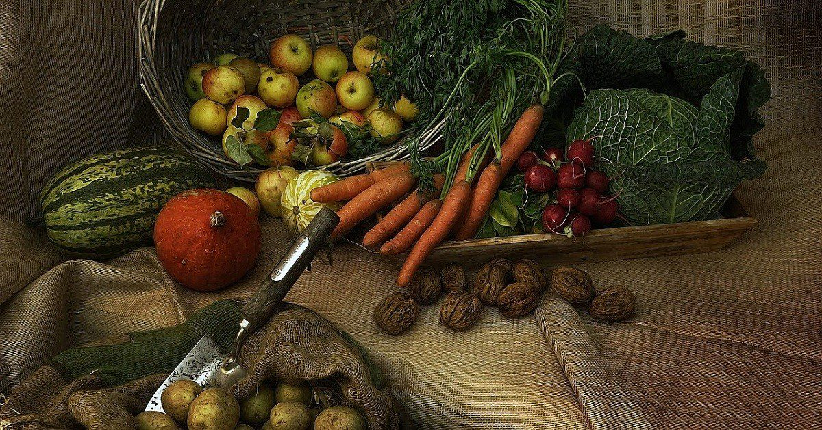 Agro, agricultura, cosecha (Foto Pixabay)