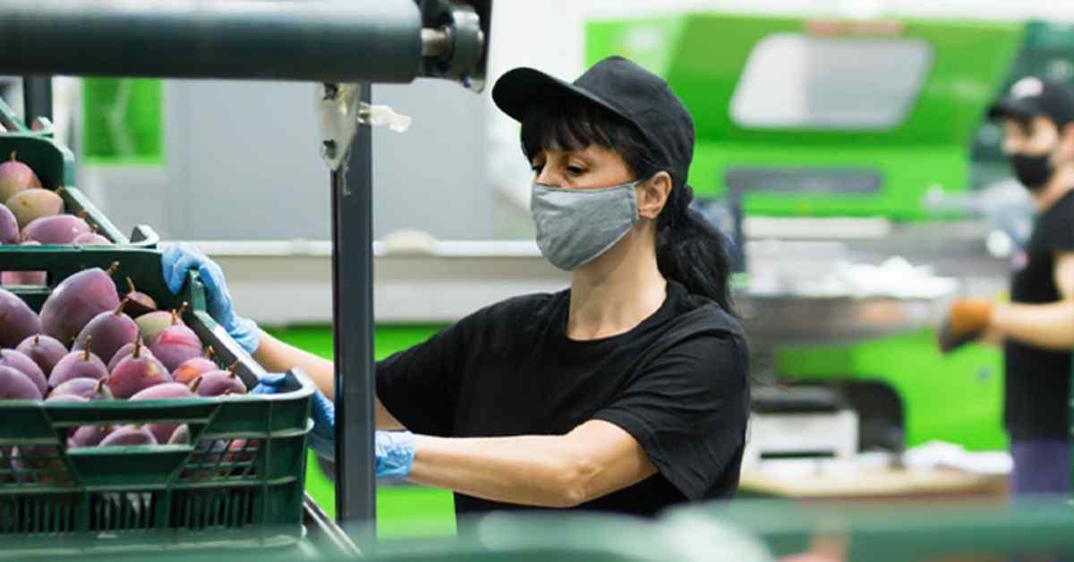 Proyecto de ley de reducción de jornada laboral en Colombia, ¿qué implicaciones tiene?